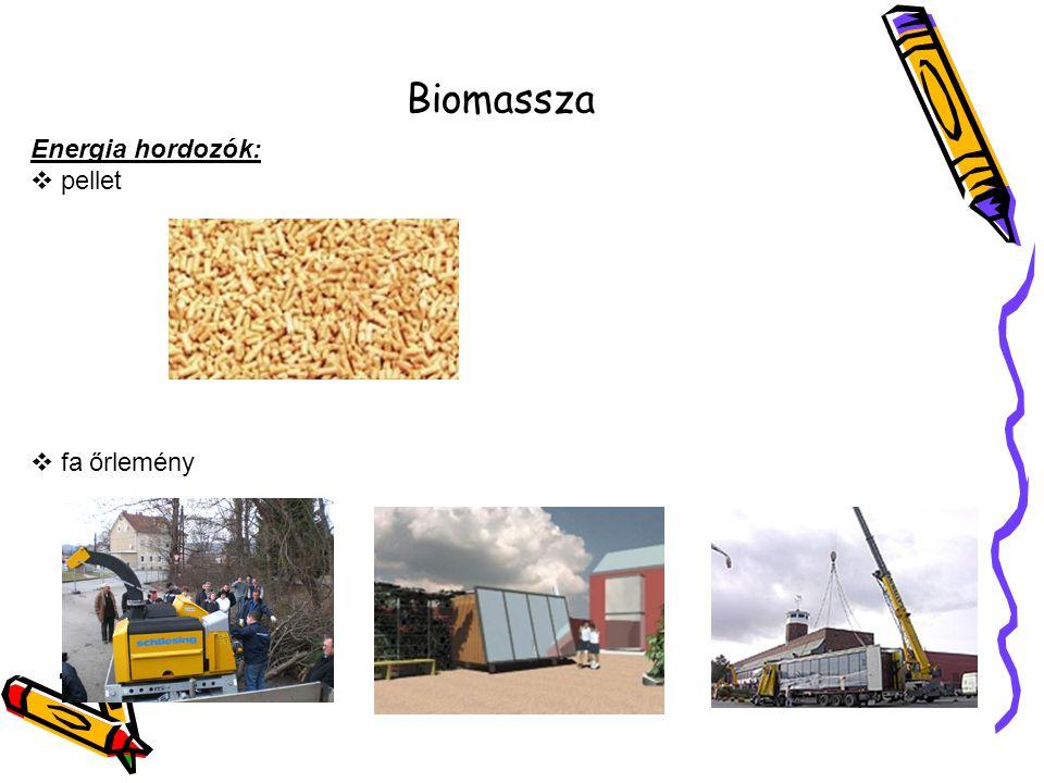 Biomassza Energia hordozók:  pellet  fa őrlemény