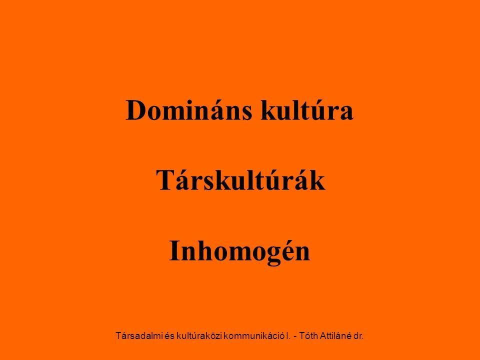 Domináns kultúra Társkultúrák Inhomogén Társadalmi és kultúraközi kommunikáció I. - Tóth Attiláné dr.