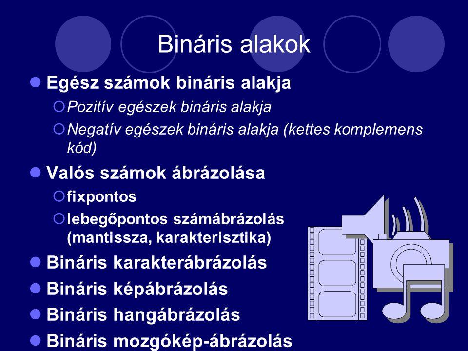 Bináris alakok Egész számok bináris alakja  Pozitív egészek bináris alakja  Negatív egészek bináris alakja (kettes komplemens kód) Valós számok ábrázolása  fixpontos  lebegőpontos számábrázolás (mantissza, karakterisztika) Bináris karakterábrázolás Bináris képábrázolás Bináris hangábrázolás Bináris mozgókép-ábrázolás