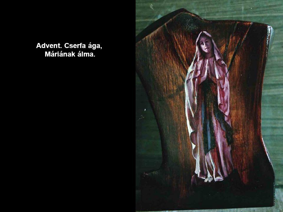 Advent. Cserfa ága, Máriának álma.