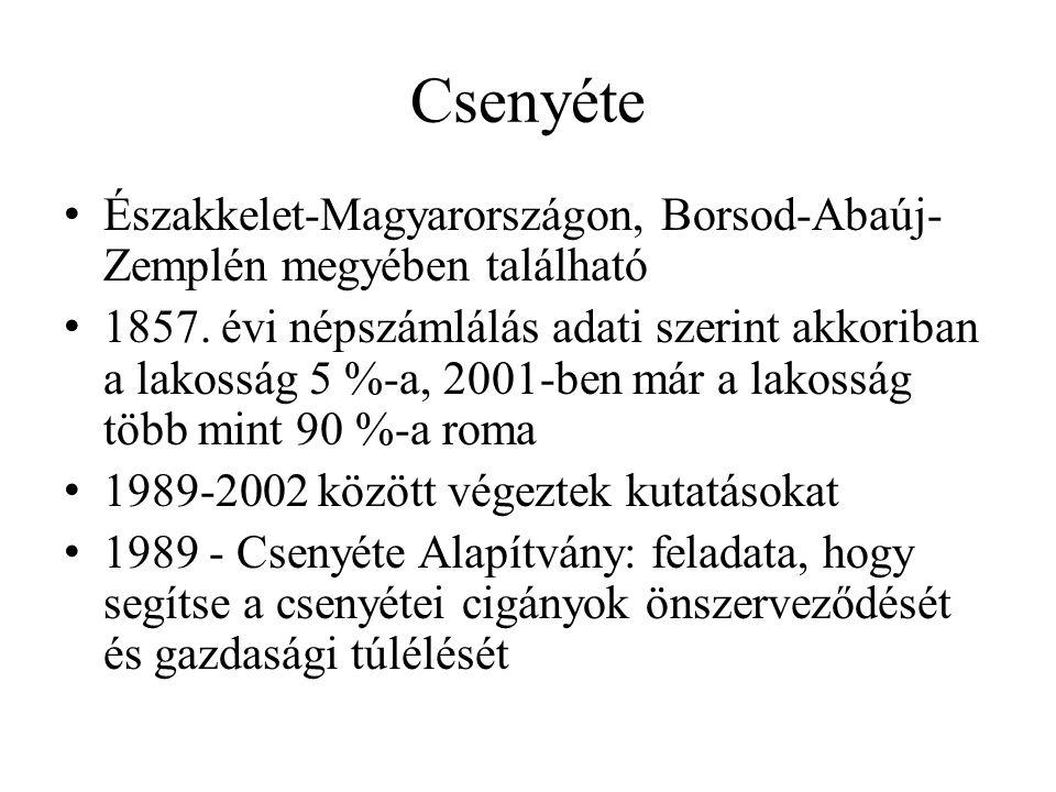 Északkelet-Magyarországon, Borsod-Abaúj- Zemplén megyében található 1857. évi népszámlálás adati szerint akkoriban a lakosság 5 %-a, 2001-ben már a la