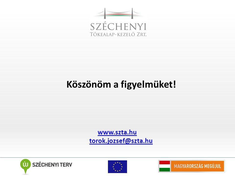 Köszönöm a figyelmüket! www.szta.hu torok.jozsef@szta.hu