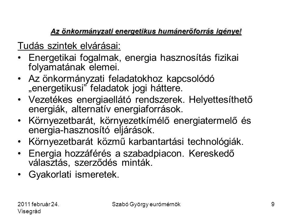 2011 február 24. Visegrád Szabó György eurómérnök10 Falra hányt borsó?