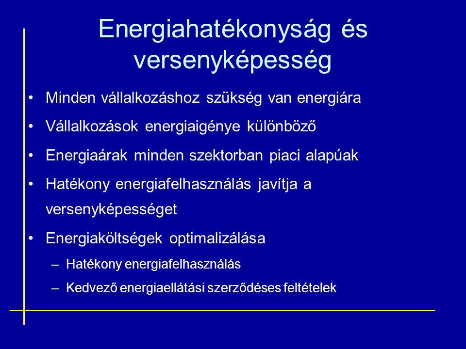 Energiahatékonyság és versenyképesség Minden vállalkozáshoz szükség van energiára Vállalkozások energiaigénye különböző Energiaárak minden szektorban piaci alapúak Hatékony energiafelhasználás javítja a versenyképességet Energiaköltségek optimalizálása –Hatékony energiafelhasználás –Kedvező energiaellátási szerződéses feltételek