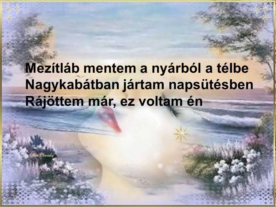 Nem kell,hogy megbocsáss… Zene:Demjén Ferenc Készítette:pzsoka9