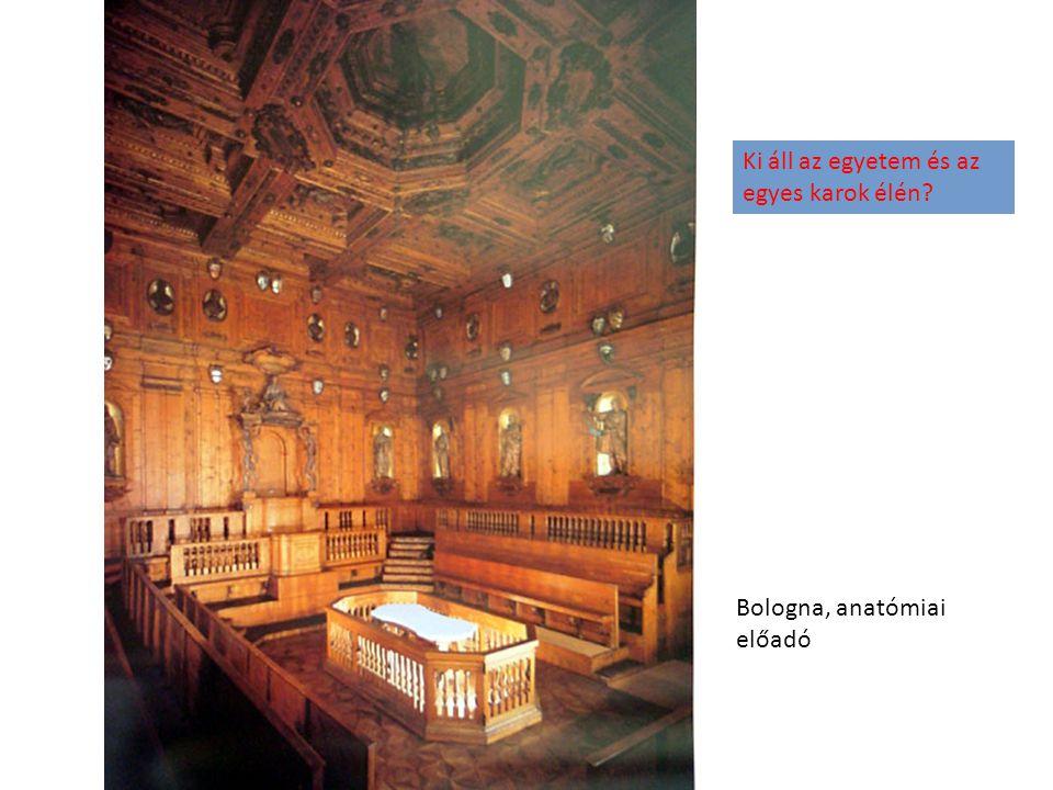 Bologna, anatómiai előadó Ki áll az egyetem és az egyes karok élén?