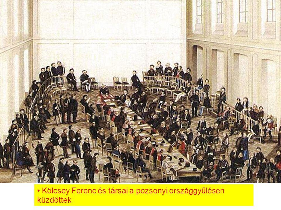 Kölcsey Ferenc és társai a pozsonyi országgyűlésen küzdöttek