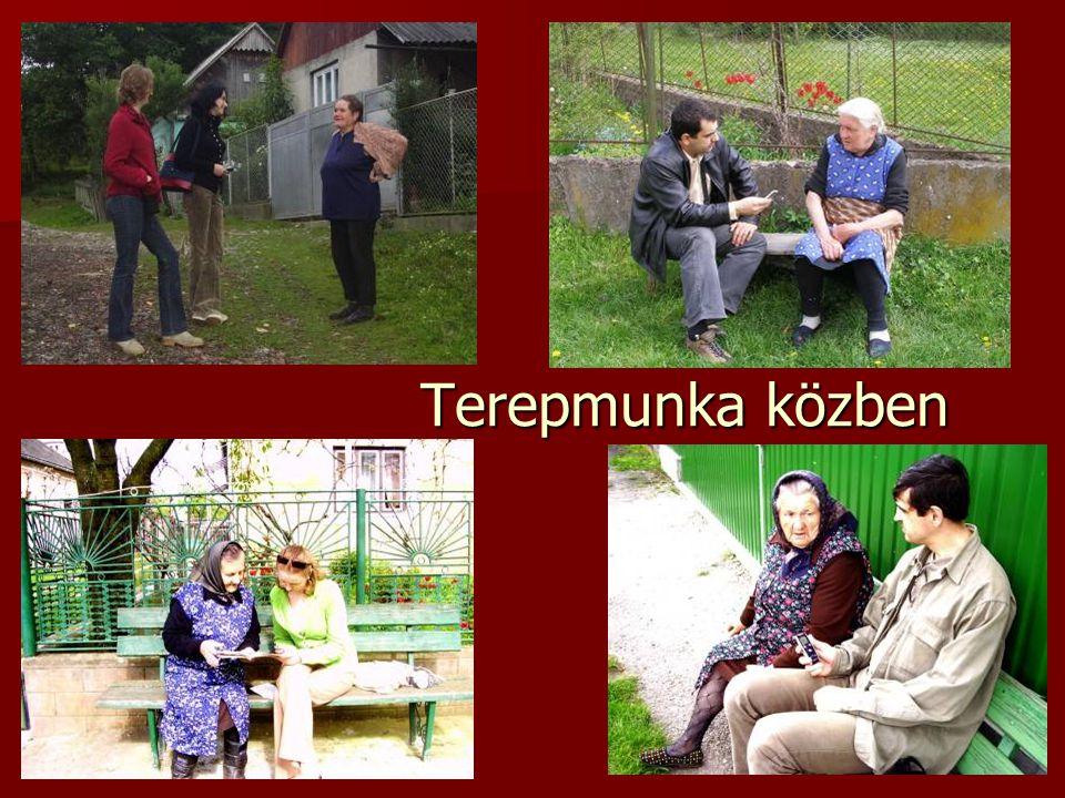 Közös kutatási programok A KUTATÁSI PROGRAM CÍMEPARTNERINTÉZMÉNYEK A magyar nyelv a Kárpát- medencében 1.