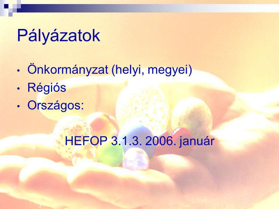 Pályázatok Önkormányzat (helyi, megyei) Régiós Országos: HEFOP 3.1.3. 2006. január