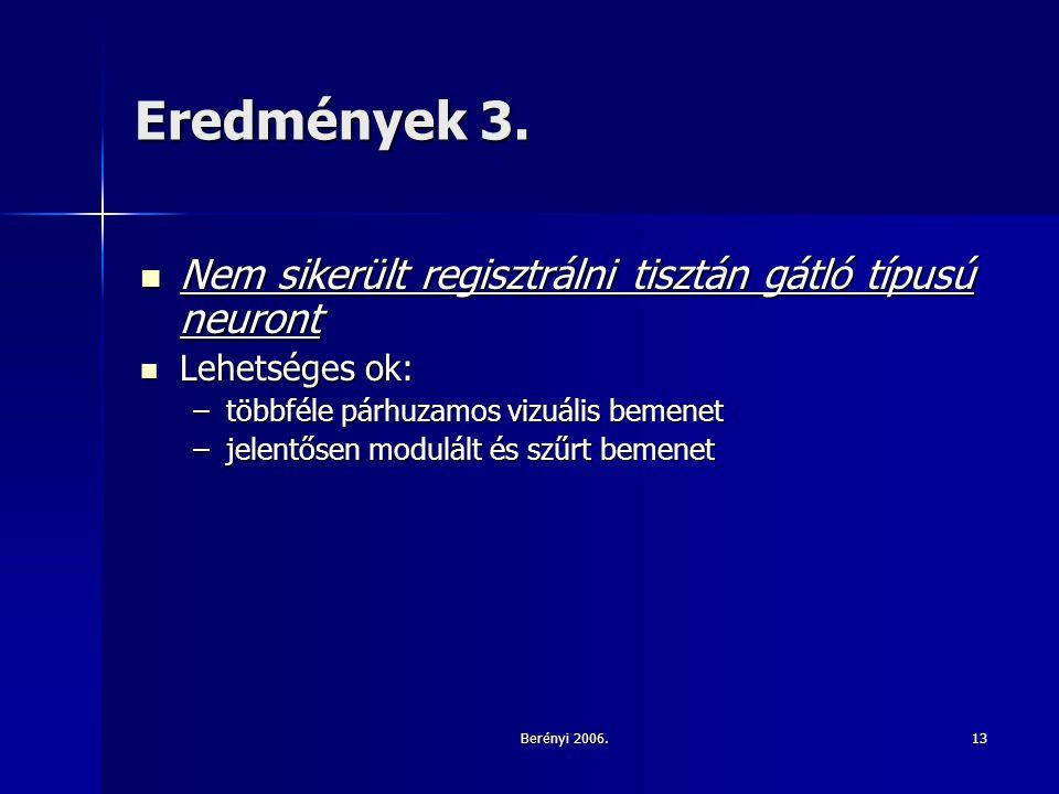 Berényi 2006.13 Eredmények 3.