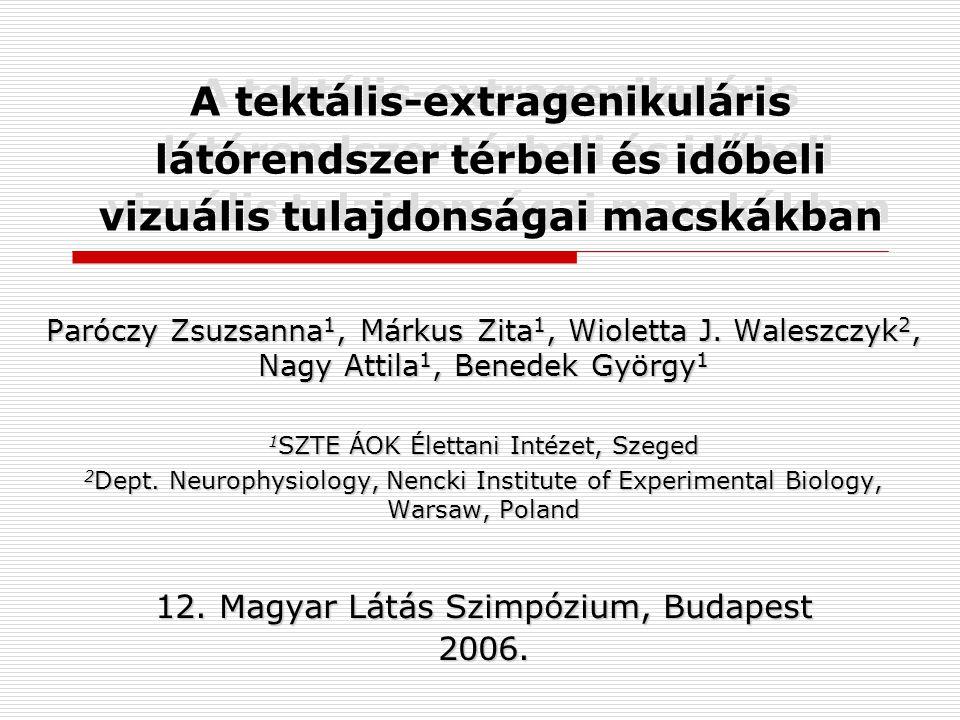 A tektális-extragenikuláris látórendszer térbeli és időbeli vizuális tulajdonságai macskákban Paróczy Zsuzsanna 1, Márkus Zita 1, Wioletta J.
