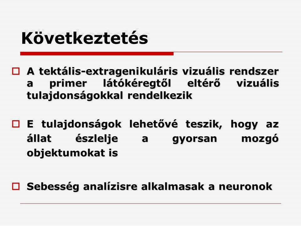 Következtetés  A tektális-extragenikuláris vizuális rendszer a primer látókéregtől eltérő vizuális tulajdonságokkal rendelkezik  E tulajdonságok lehetővé teszik, hogy az állat észlelje a gyorsan mozgó objektumokat is  Sebesség analízisre alkalmasak a neuronok