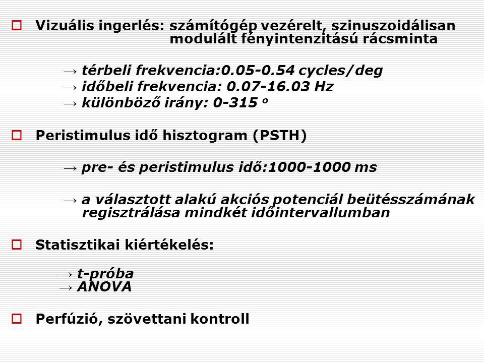  Vizuális ingerlés: számítógép vezérelt, szinuszoidálisan modulált fényintenzitású rácsminta → térbeli frekvencia:0.05-0.54 cycles/deg → időbeli frekvencia: 0.07-16.03 Hz → különböző irány: 0-315 o  Peristimulus idő hisztogram (PSTH) → pre- és peristimulus idő:1000-1000 ms → a választott alakú akciós potenciál beütésszámának regisztrálása mindkét időintervallumban  Statisztikai kiértékelés: → t-próba → ANOVA  Perfúzió, szövettani kontroll