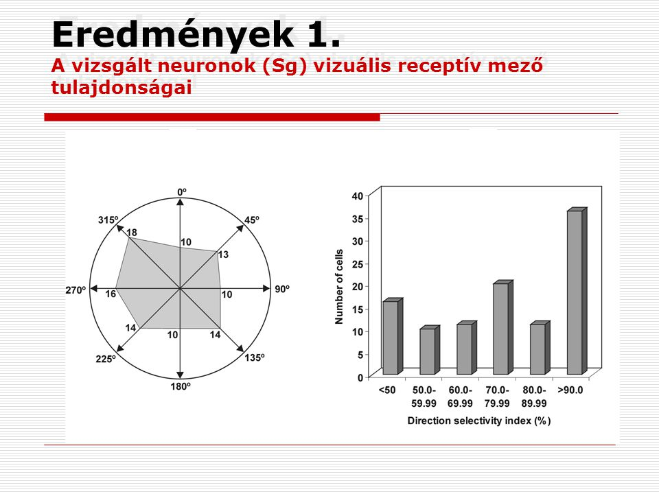 Eredmények 1. A vizsgált neuronok (Sg) vizuális receptív mező tulajdonságai