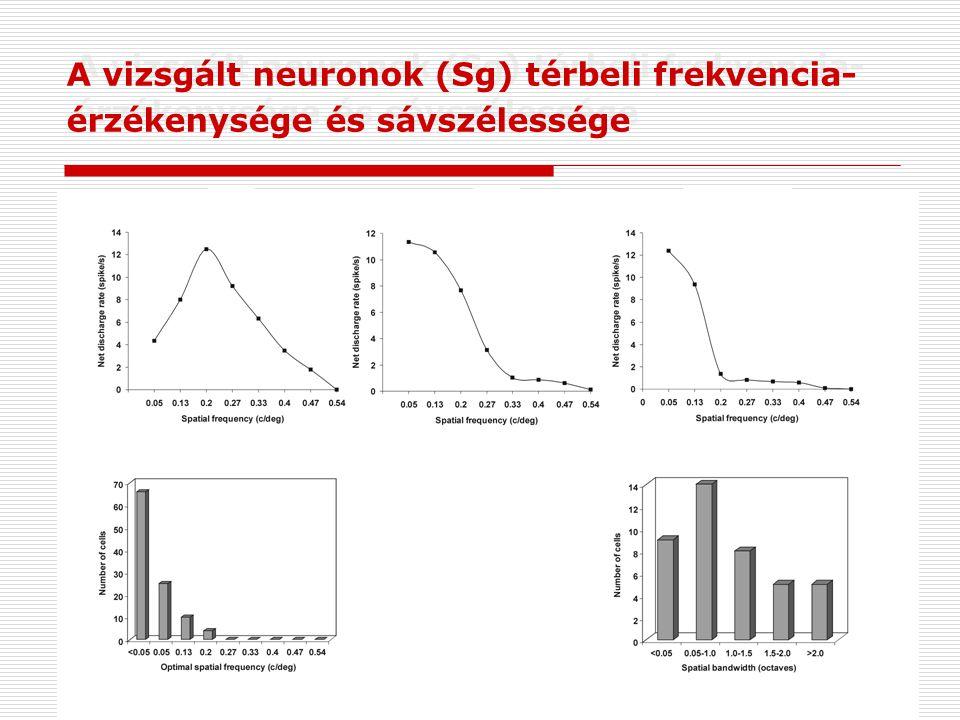 A vizsgált neuronok (Sg) térbeli frekvencia- érzékenysége és sávszélessége