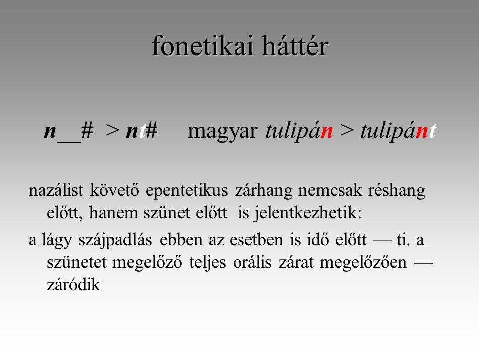 fonetikai háttér n__# > nt#magyar tulipán > tulipánt nazálist követő epentetikus zárhang nemcsak réshang előtt, hanem szünet előtt is jelentkezhetik: a lágy szájpadlás ebben az esetben is idő előtt — ti.