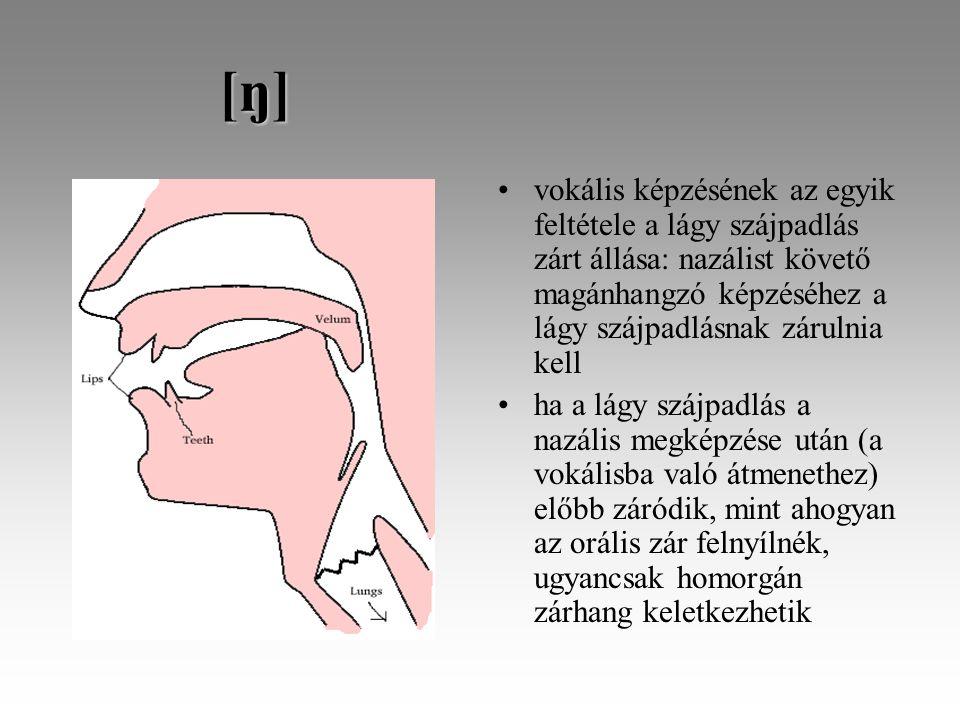 [ŋ] [ŋ] vokális képzésének az egyik feltétele a lágy szájpadlás zárt állása: nazálist követő magánhangzó képzéséhez a lágy szájpadlásnak zárulnia kell ha a lágy szájpadlás a nazális megképzése után (a vokálisba való átmenethez) előbb záródik, mint ahogyan az orális zár felnyílnék, ugyancsak homorgán zárhang keletkezhetik