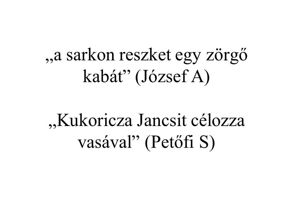 """""""a sarkon reszket egy zörgő kabát (József A) """"Kukoricza Jancsit célozza vasával (Petőfi S)"""