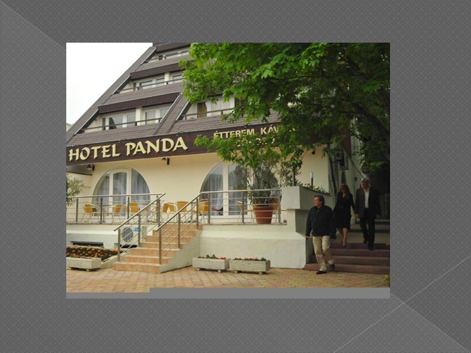 Nyílt nap és állásbörze megváltozott munkaképességűek részére a Hotel Pandában 2010.