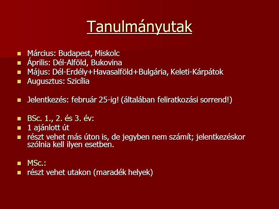 Tanulmányutak Március: Budapest, Miskolc Március: Budapest, Miskolc Április: Dél-Alföld, Bukovina Április: Dél-Alföld, Bukovina Május: Dél-Erdély+Havasalföld+Bulgária, Keleti-Kárpátok Május: Dél-Erdély+Havasalföld+Bulgária, Keleti-Kárpátok Augusztus: Szicília Augusztus: Szicília Jelentkezés: február 25-ig.