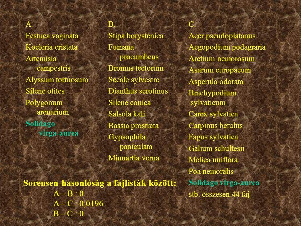 A példában az egyik homoki gyepi fajlista (A) jobban hasonlít a bükkös fajlistára (C), mint egy másik homoki gyepre (B).