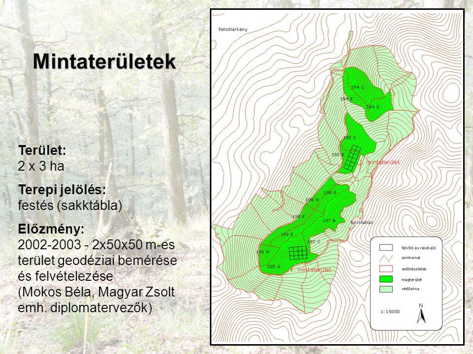 Mintaterületek Terület: 2 x 3 ha Terepi jelölés: festés (sakktábla) Előzmény: 2002-2003 - 2x50x50 m-es terület geodéziai bemérése és felvételezése (Mokos Béla, Magyar Zsolt emh.