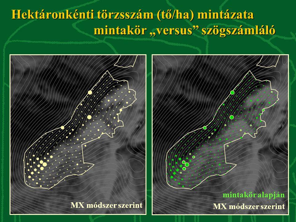 """Hektáronkénti törzsszám (tő/ha) mintázata mintakör """"versus"""" szögszámláló MX módszer szerint mintakör alapján MX módszer szerint"""
