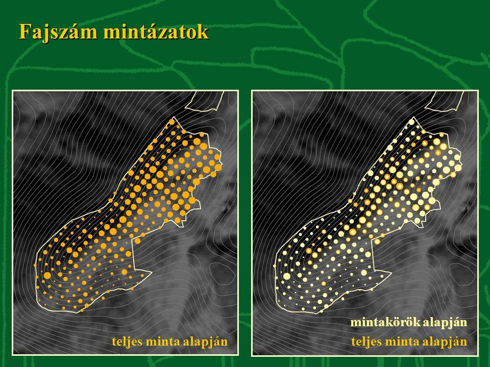Fajszám mintázatok teljes minta alapján mintakörök alapján teljes minta alapján