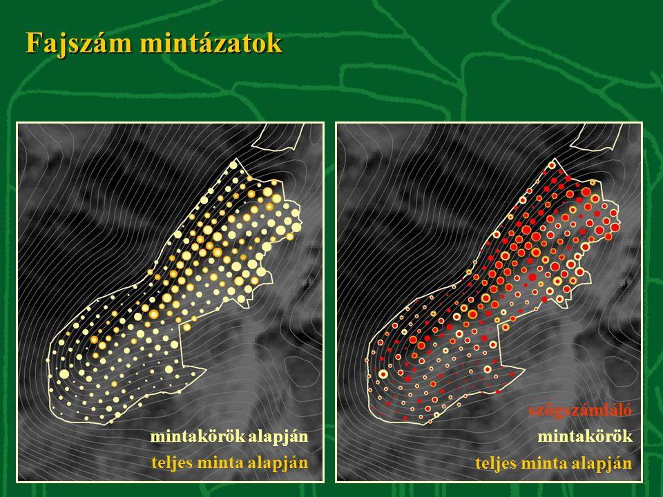 Fajszám mintázatok szögszámláló mintakörök teljes minta alapján mintakörök alapján teljes minta alapján