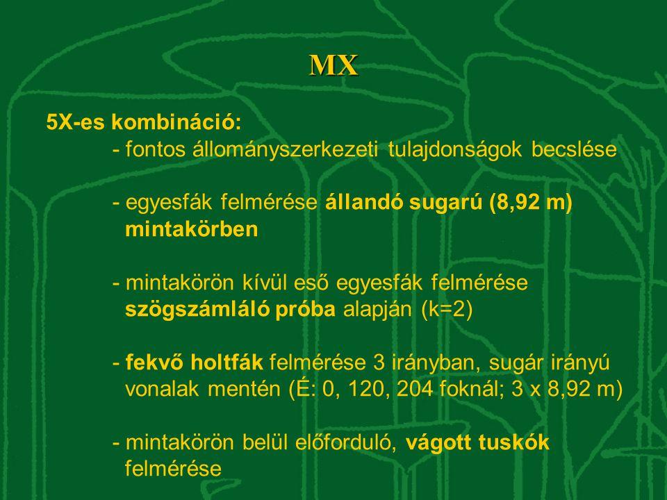 MX 5X-es kombináció: - fontos állományszerkezeti tulajdonságok becslése - egyesfák felmérése állandó sugarú (8,92 m) mintakörben - mintakörön kívül eső egyesfák felmérése szögszámláló próba alapján (k=2) - fekvő holtfák felmérése 3 irányban, sugár irányú vonalak mentén (É: 0, 120, 204 foknál; 3 x 8,92 m) - mintakörön belül előforduló, vágott tuskók felmérése