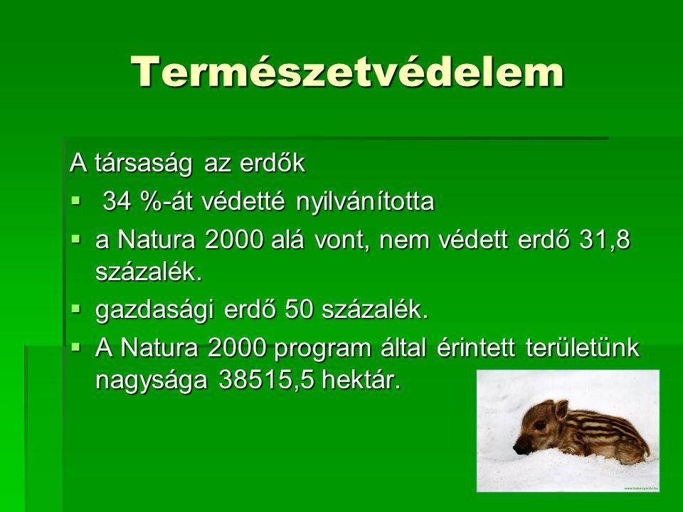 Természetvédelem A társaság az erdők  34 %-át védetté nyilvánította  a Natura 2000 alá vont, nem védett erdő 31,8 százalék.