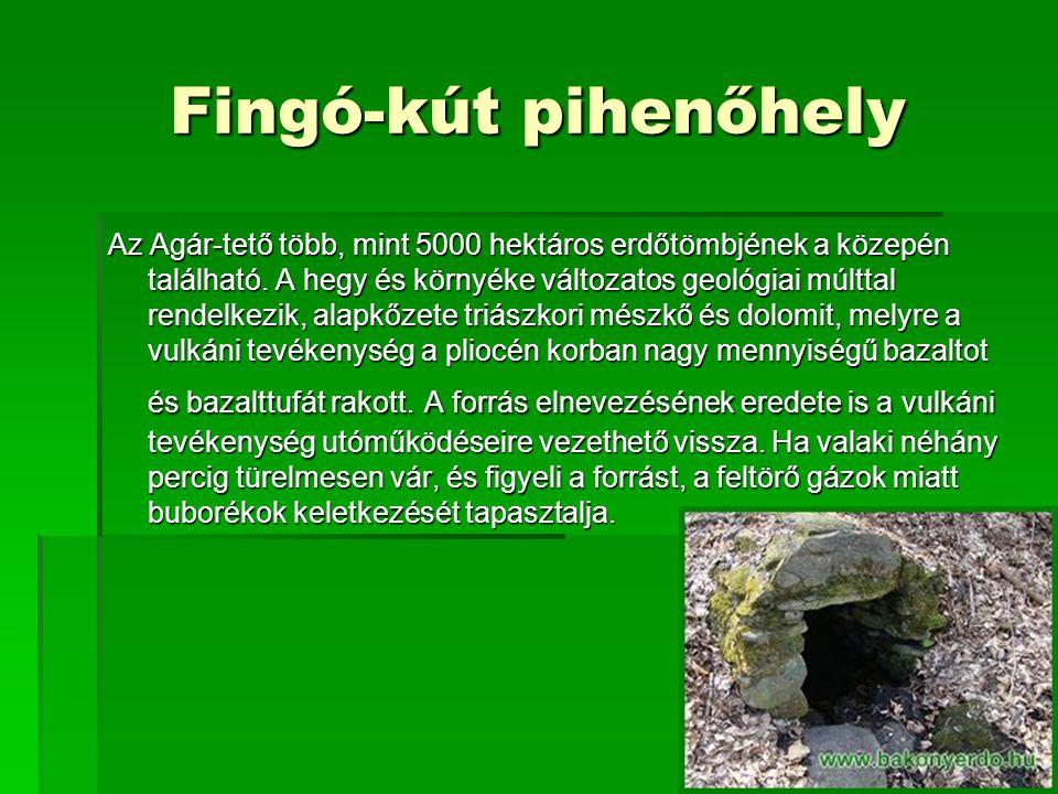 Fingó-kút pihenőhely Az Agár-tető több, mint 5000 hektáros erdőtömbjének a közepén található.