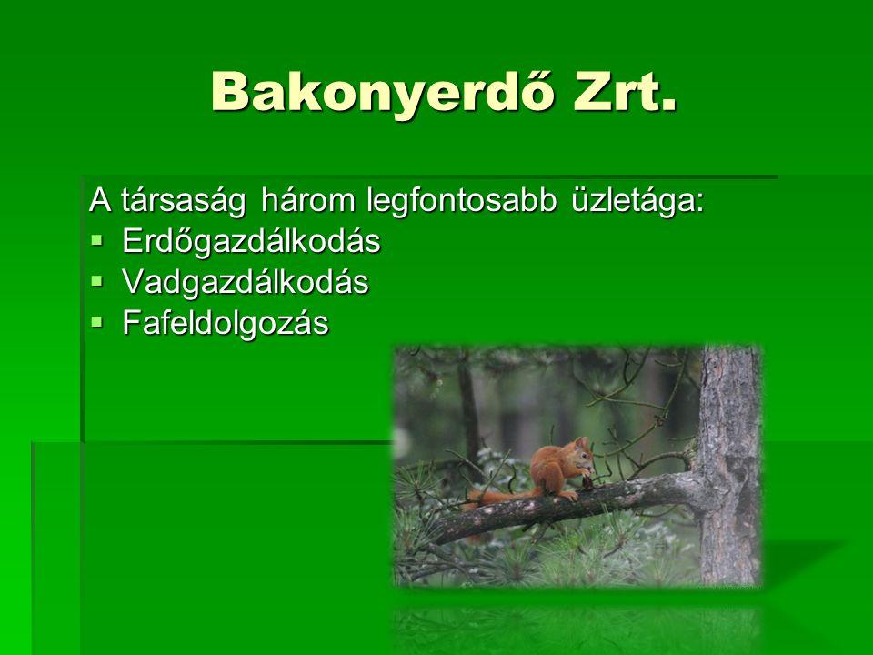 Bakonyerdő Zrt.