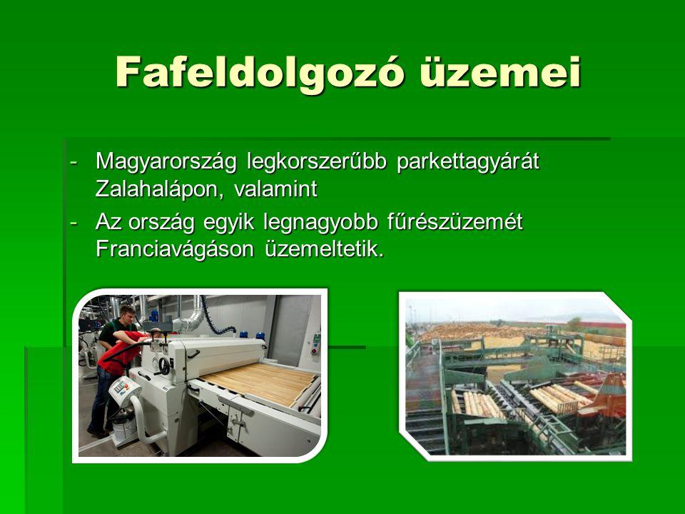 Fafeldolgozó üzemei -Magyarország legkorszerűbb parkettagyárát Zalahalápon, valamint -Az ország egyik legnagyobb fűrészüzemét Franciavágáson üzemeltetik.