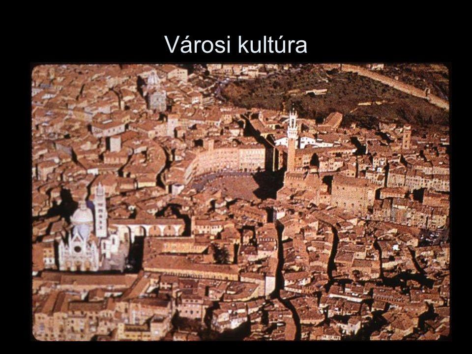 Városi kultúra