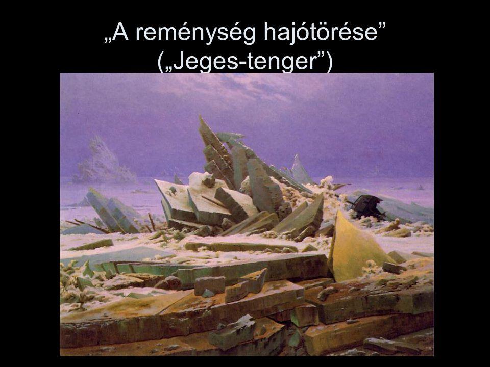 """""""A reménység hajótörése"""" (""""Jeges-tenger"""")"""
