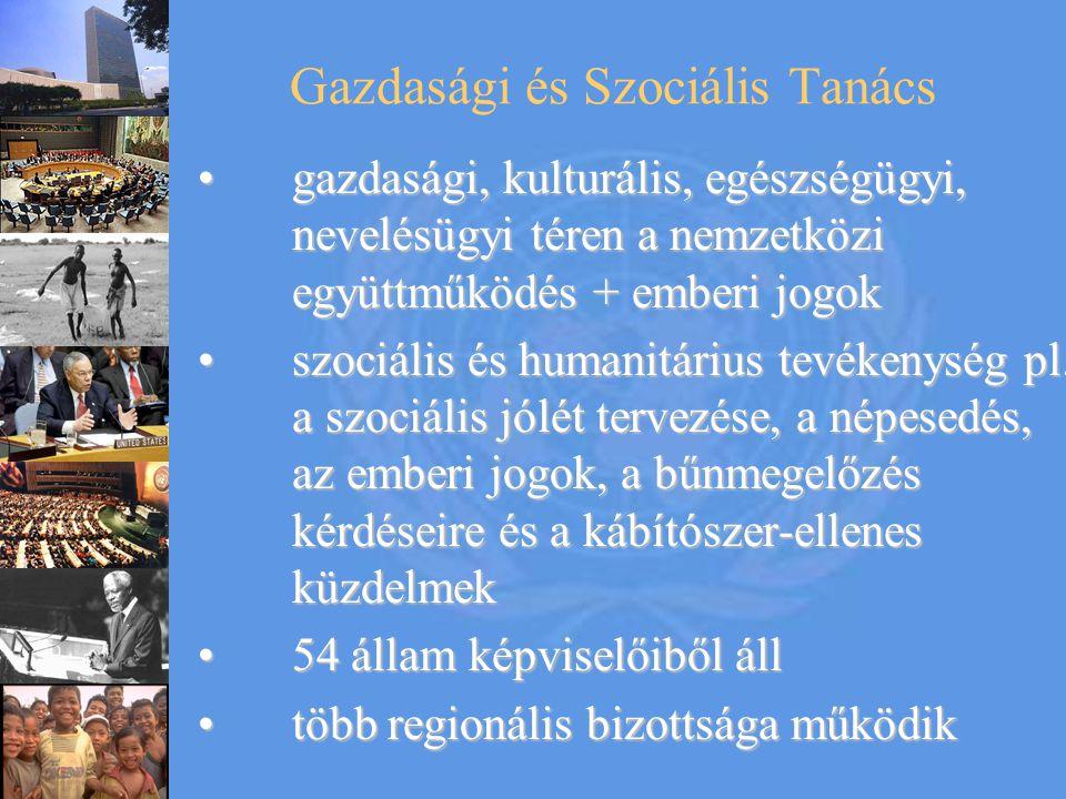 Gazdasági és Szociális Tanács gazdasági, kulturális, egészségügyi, nevelésügyi téren a nemzetközi együttműködés + emberi jogokgazdasági, kulturális, e