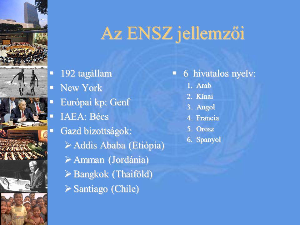 Az ENSZ jellemzői  192 tagállam  New York  Európai kp: Genf  IAEA: Bécs  Gazd bizottságok:  Addis Ababa (Etiópia)  Amman (Jordánia)  Bangkok (