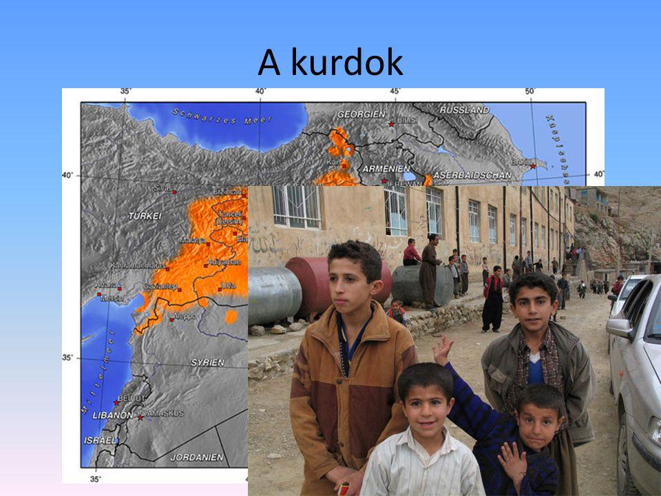 A kurdok