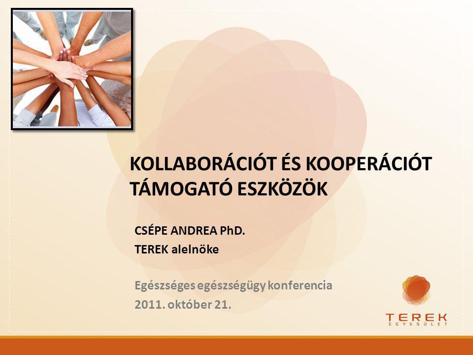 CSÉPE ANDREA PhD.TEREK alelnöke Egészséges egészségügy konferencia 2011.
