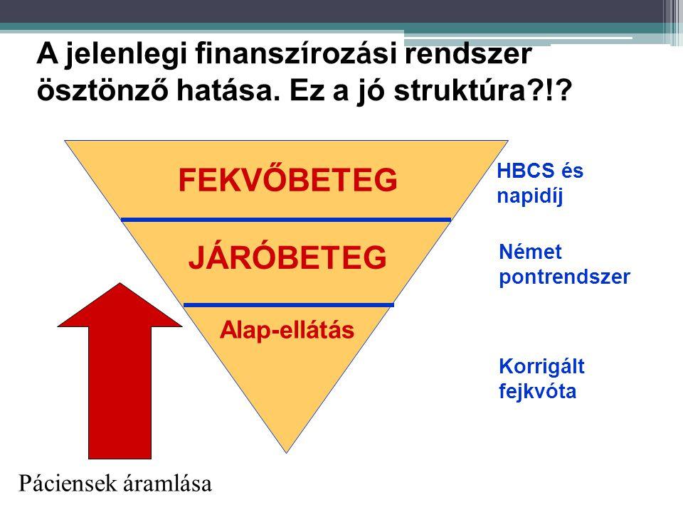 A jelenlegi finansz í roz á si rendszer ösztönző hatása.