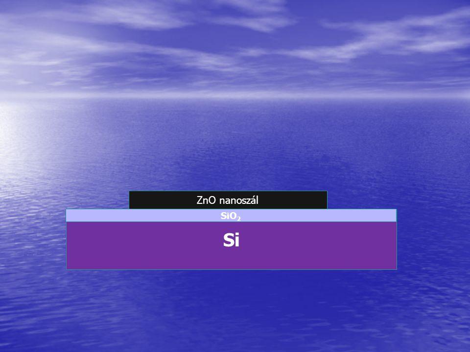ZnO nanoszál Si SiO 2