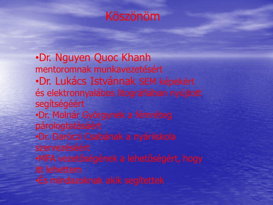 Köszönöm Dr.Nguyen Quoc Khanh mentoromnak munkavezetésért Dr.