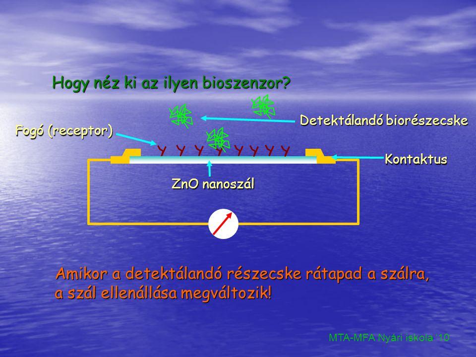Növesztés Oldat: Zn nitrát vizes oldata Szubsztrát: Si/ZnO T:95C t:13h