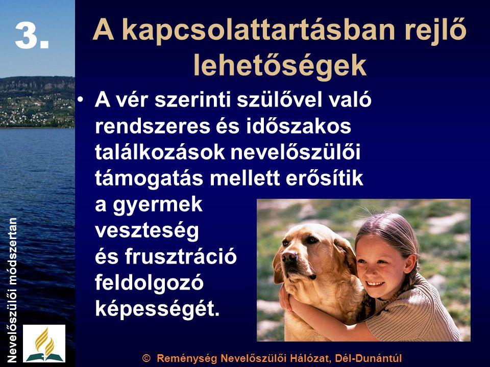 © Reménység Nevelőszülői Hálózat, Dél-Dunántúl Nevelőszülői módszertan A kapcsolattartásban rejlő lehetőségek A vér szerinti szülővel való rendszeres