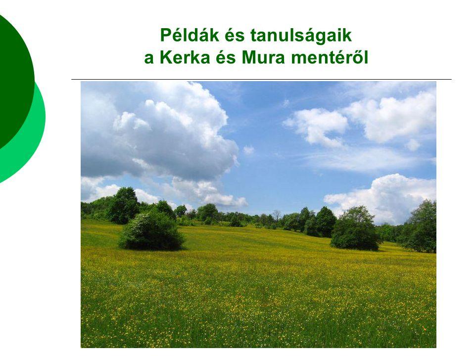 Példák és tanulságaik a Kerka és Mura mentéről