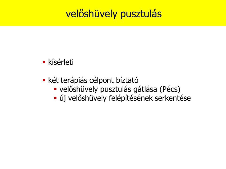 velőshüvely pusztulás  kísérleti  két terápiás célpont bíztató  velőshüvely pusztulás gátlása (Pécs)  új velőshüvely felépítésének serkentése