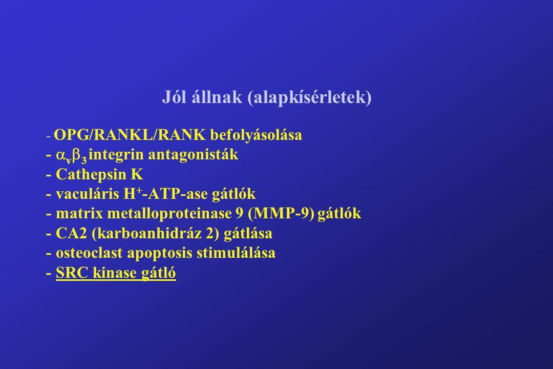Jól állnak (alapkísérletek) - OPG/RANKL/RANK befolyásolása -  v  3 integrin antagonisták - Cathepsin K - vaculáris H + -ATP-ase gátlók - matrix meta