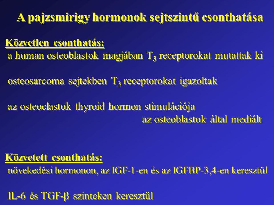 A pajzsmirigy hormonok sejtszintű csonthatása Közvetlen csonthatás: a human osteoblastok magjában T 3 receptorokat mutattak ki osteosarcoma sejtekben T 3 receptorokat igazoltak az osteoclastok thyroid hormon stimulációja az osteoblastok által mediált Közvetett csonthatás: növekedési hormonon, az IGF-1-en és az IGFBP-3,4-en keresztül IL-6 és TGF-  szinteken keresztül Közvetlen csonthatás: a human osteoblastok magjában T 3 receptorokat mutattak ki osteosarcoma sejtekben T 3 receptorokat igazoltak az osteoclastok thyroid hormon stimulációja az osteoblastok által mediált Közvetett csonthatás: növekedési hormonon, az IGF-1-en és az IGFBP-3,4-en keresztül IL-6 és TGF-  szinteken keresztül