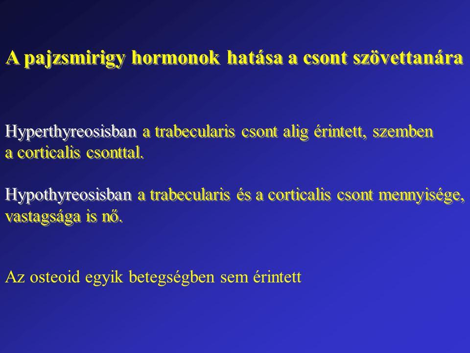 A pajzsmirigy hormonok hatása a csont szövettanára Hyperthyreosisban a trabecularis csont alig érintett, szemben a corticalis csonttal. Hypothyreosisb